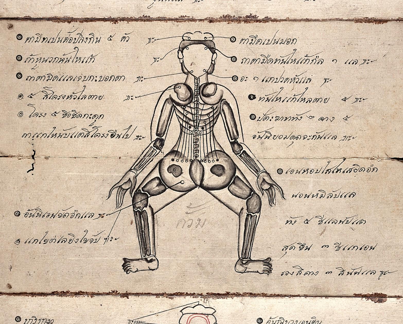 Thai yoga massage manuscript